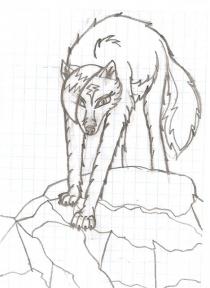 Волчица Лидер
