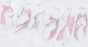 Арт Кионы 6