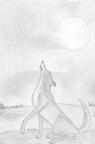 Wolfs Girlfrend 0