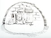 Shad 11