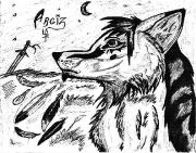 Argiz 6