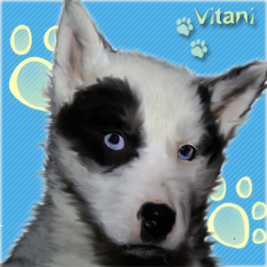 http://balto.ru/images/fbfiles/images/_________1-e8893d4ae401d5e43d8a39349428ad14.jpg